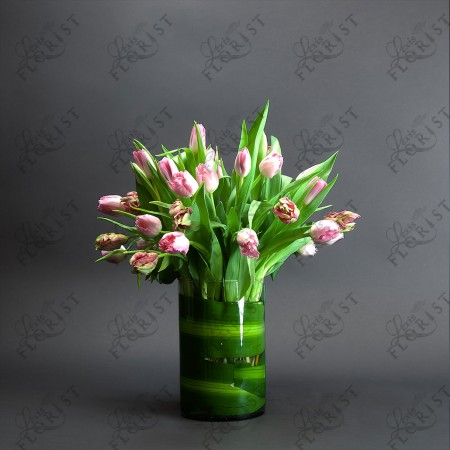 Three dozen Pink tulip flowers in a clear glass cylindrical vase