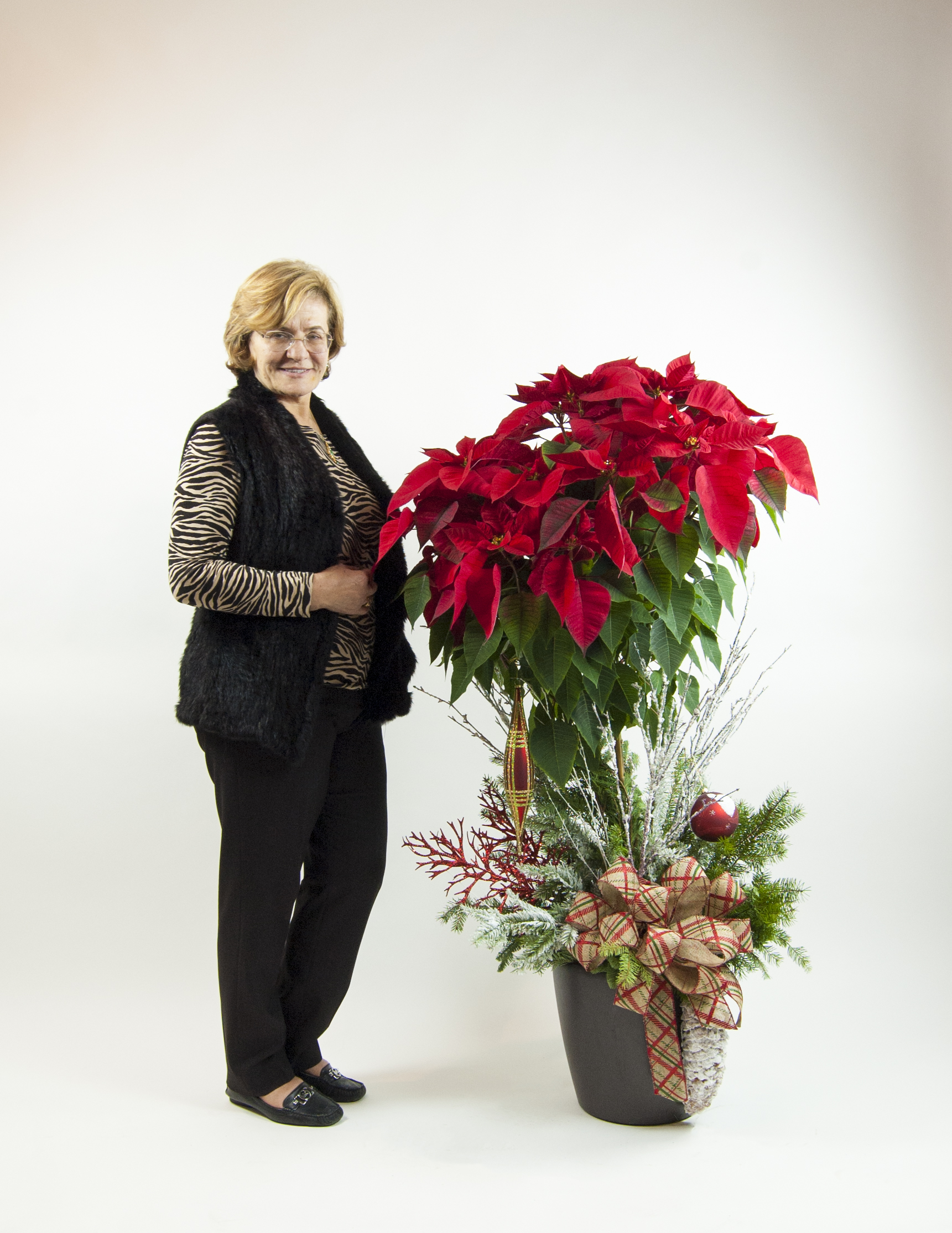 Tall Christmas red pointsettia